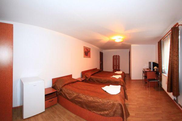 transilvania-vila-baile-balvanyos-050F6218F1-4B91-E557-702E-E88DB26307D1.jpg